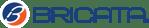 Bricata Logo_FullColor-214356-edited-1